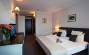 Interhotel Sandanski Double Room